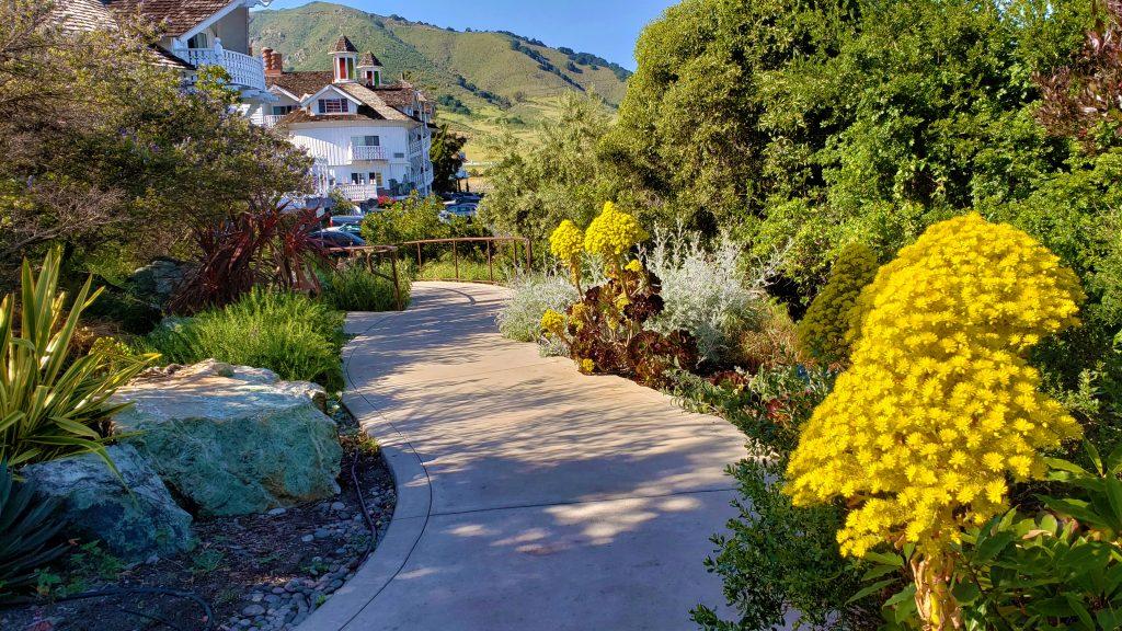 madonna inn path pool