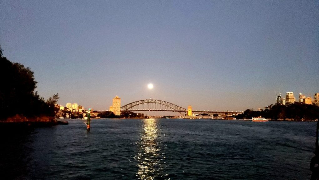 sydney tall ship twilight cruise